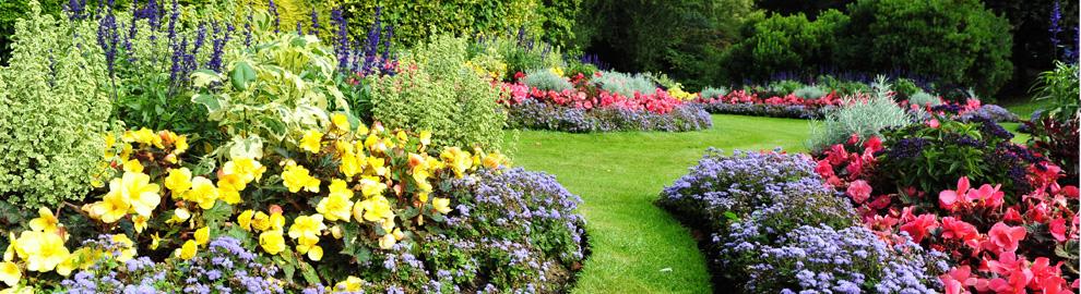 Horticultural Correspondence College - Become a Garden ...